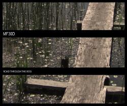 Mf30d - Road Through The Bog (2010)