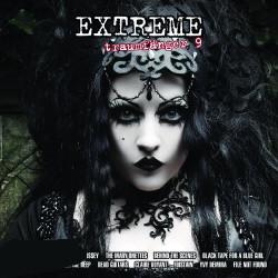 VA - Extreme Traumfänger Vol.9 (2009)