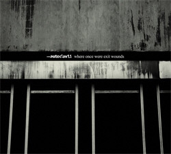 Autoclav1.1 - Where Once Were Exit Wounds (2009)