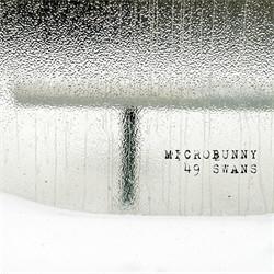 Microbunny - 49 Swans (2010)