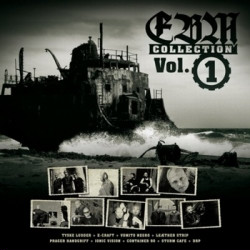 VA - EBM Collection Vol.1 (Limited Edition Vinyl) (2009)