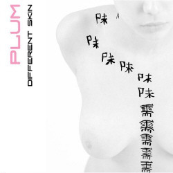 Plum - Different Skin (2009)