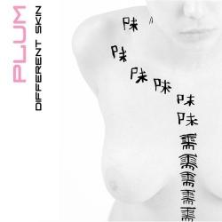 Plum - Different Skin (2009)