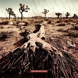 The Prayer Tree - The Prayer Tree (2010)