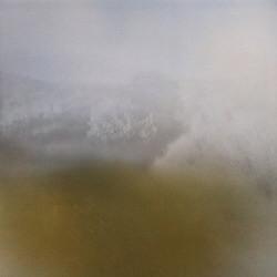 Richard Skelton - Landings (2010)