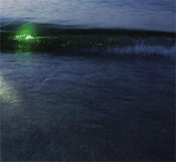 Emeralds - Emeralds (2010)