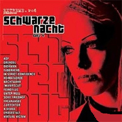 VA - Schwarze Nacht Vol.4 (Limited Edition) (2010)