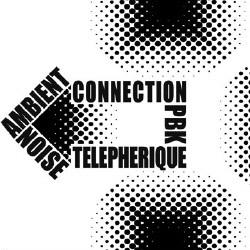 PBK & Telepherique - Noise-Ambient Сonnection (2008)