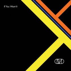 OMD - If You Want It (CDM) (2010) +Remixes