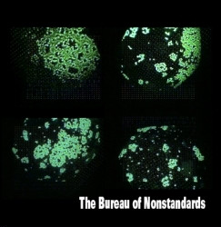 The Bureau Of Nonstandards - The Bureau Of Nonstandards (2008)