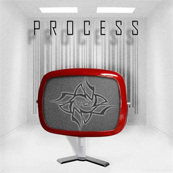 AADF - Process (2011)