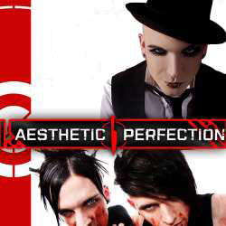 Aesthetic Perfection Discography 2002-2019