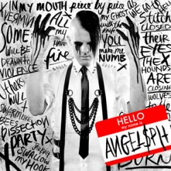 Angelspit - Hello My Name Is (2011)