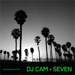 DJ Cam - Seven (2011)