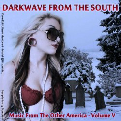 VA - Darkwave From The South: Music From The Other America Volume V (2011)