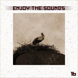 VA - Enjoy The Sounds 16 (2012)