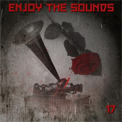 VA - Enjoy The Sounds 16 (2012)
