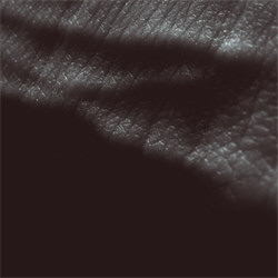 JK Flesh - Posthuman (2CD) (2012)