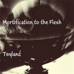 Mortification To The Flesh - Toyland (2012)