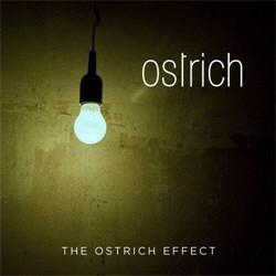 Ostrich - The Ostrich Effect (2012)