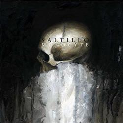 Saltillo - Monocyte (2012)