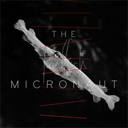 The Micronaut - Friedfisch (2012)