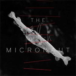 The Micronaut - Friedfisch (2012)