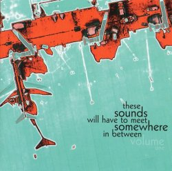 VA - These Sounds Will Have To Meet Somewhere In Between Volume One (2011)