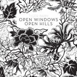 Tiger Baby - Open Windows Open Hills (2011)
