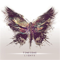 Tineidae - Lights (2012)