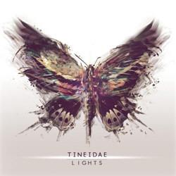 Tineidae - Lights (2012)