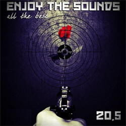 VA - Enjoy The Sounds 20.5 [All The Best] (2CD) (2012)