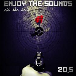 VA - Enjoy The Sounds 20.5 [All The Best] (2CD) (2012)