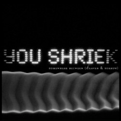 You Shriek - Somewhere Between (Heaven & Sorrow) (2011)