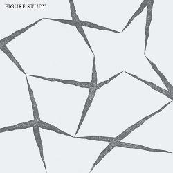 Figure Study - Figure Study (2013)