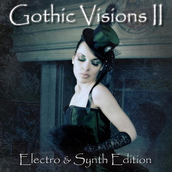 VA - Gothic Visions Vol. 2 (Electro & Synth Edition) (2013)
