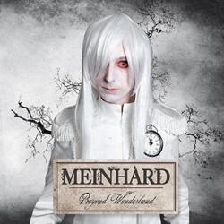 Meinhard - Beyond Wonderland (2013)