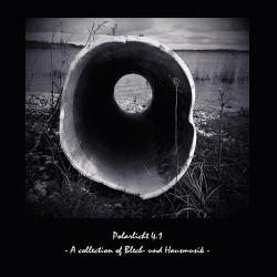 Polarlicht 4.1 - A Collection Of Blech Und Hausmusik (2013)