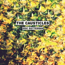 The Causticles - Eric Gottesman (2013)