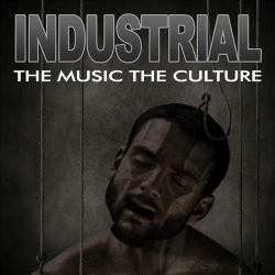VA - The Music The Culture: Industrial (2011)