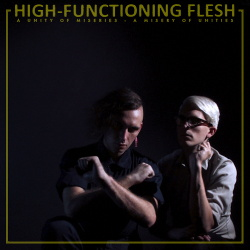 High-Functioning Flesh - A Unity of Miseries - A Misery of Unities (2014)