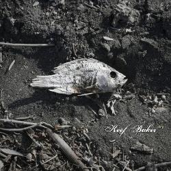 Keef Baker - Dry (2014)