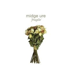 Midge Ure - Fragile (2014)