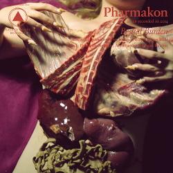 Pharmakon - Bestial Burden (2014)