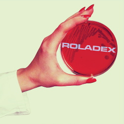Roladex - Anthems for the Micro-Age (2014)