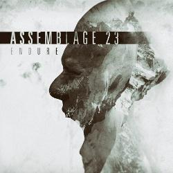 Assemblage 23 - Endure (2016)