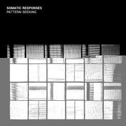 Somatic Responses - Pattern Seeking (2017)