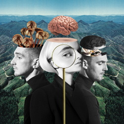 Clean Bandit - What Is Love (Japanese Edition) (2018)