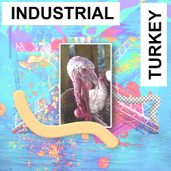 VA - Industrial Turkey (2018)