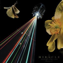 Miracle - The Strife Of Love In A Dream (2018)